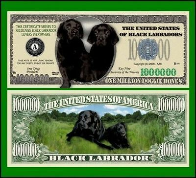 25 Factory Fresh Novelty Black Labrador Dog Million Dollar Bills