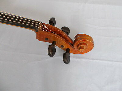 cello violoncello Conrad A. Goetz (Götz) made in Germany