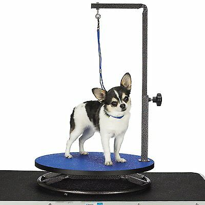 Master Equipment Small Pet Grooming Table, Blue TP160-19 New