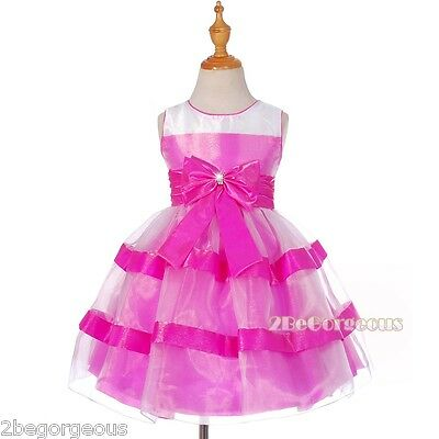 Shimmery Organza Taffeta Birthday Wedding Flower Girl Party Dress Age 2-10 FG291