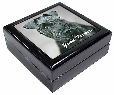 Kerry Blue Terrier 'Yours Forever' Picture Jewellery Box Christmas Gi, AD-KB1yJB