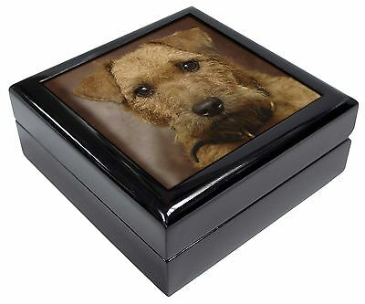 Lakeland Terrier Dog Picture Jewellery Box Christmas Gift, AD-LT2JB