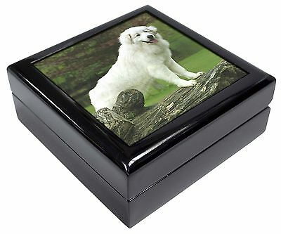 Pyrenean Mountain Dog Picture Jewellery Box Christmas Gift, AD-PM1JB