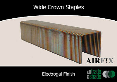 Wide Crown Staples - Electrogal Finish  - Size: 19mm x 25mm - Box:5,000