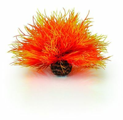 Oase Biorb Flame Sea Lily Orange Plant Fish Tank Decoration Biube Flow Life