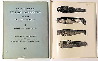 Egyptian antiquities in the British Museum I Mummies and Human Remains 1968