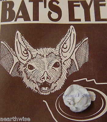 BAT'S EYE CHARM By INDIO PRODUCTS Wicca Pagan Witch Goth PROTECTION MAGIC
