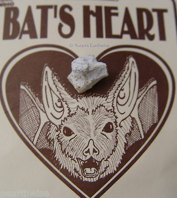 BAT'S HEART CHARM By INDIO PRODUCTS Wicca Pagan Witch Goth GOOD LUCK MAGIC