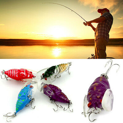 4pcs winged cicada surface walker bug lure bream bass trout plum