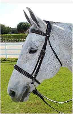 HDR Fancy Padded Bridle Monocrown Patent Piping Havana Cob