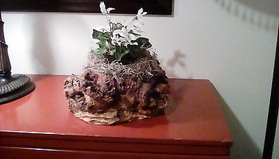 "Burl ""Tortured Earth"" large wood piece"