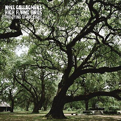 "Noel Gallagher - The Dying Of The Light - New 7"" Single"