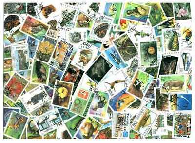 Tanzania Stamp Collection - 200 Different Stamps
