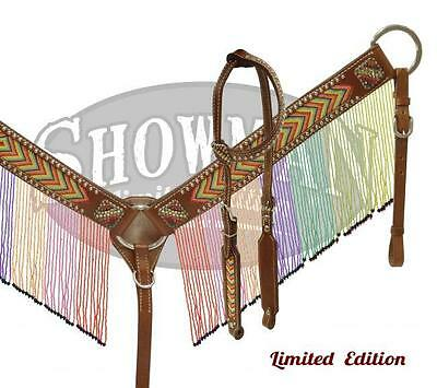 Showman LIMITED EDITION Rainbow beaded fringe headstall and breast collar set!