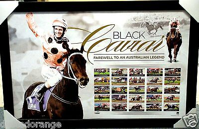 Black Caviar Unsigned Farewell To A Legend Limited Edition Print Framed - Nolen