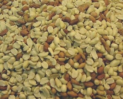 Alpine Ingredients RAW PEANUT Shelled Peanuts Protein Rich 100% Edible For Birds