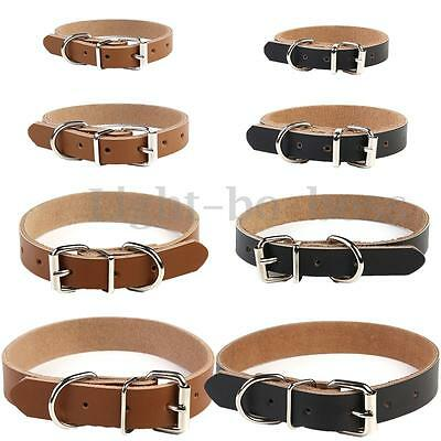 Cow Leather Dog Pet Cat Puppy Collar Neck Buckle Adjustable Gift XS S M L AU NEW