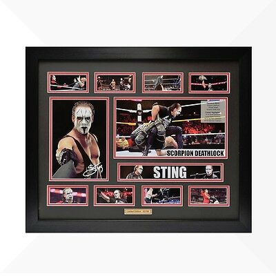 Sting WWE Signed & Framed Memorabilia - Black/Red Limited Edition