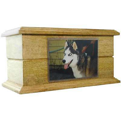"""Large Pet Cremation Urn Made from Rosewood Holds 4"""" by 6"""" Pictures. PCO-308"""