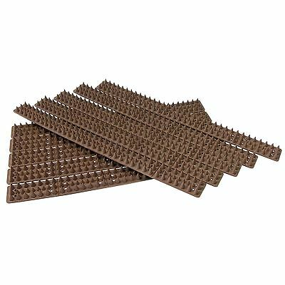10pc 5m Security Spikes Brown Fence Window Sill Gate Wall Home Animal Security