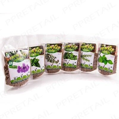 GROW YOUR OWN HERBS 6 Mixed Seed Bags Kitchen Cooking Home Gardening Multi Pack