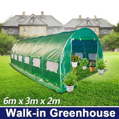 6x3M Galvanised pole super strong Walk-in Polytunnel Greenhouse