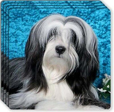 Tibetan Terrier Rubber Coaster Set