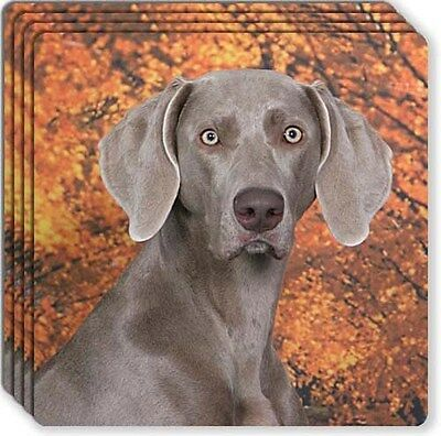 Weimaraner Rubber Coaster Set
