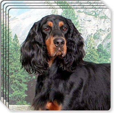 Gordon Setter Rubber Coaster Set