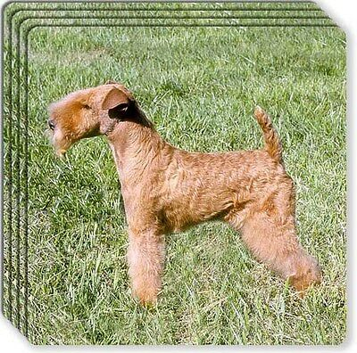 Lakeland Terrier Rubber Coaster Set