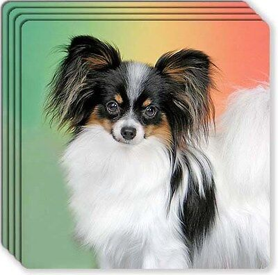 Papillon Rubber Coaster Set