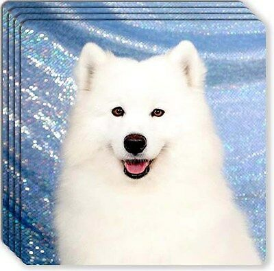 Samoyed Rubber Coaster Set