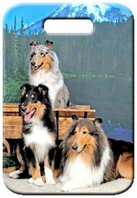 Set of 2 Collie Rough Luggage Tags