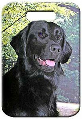 Set of 2 Flat Coated Retriever Luggage Tags