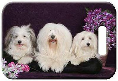 Set of 2 Havanese Luggage Tags