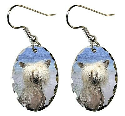 Chinese Crested Earrings