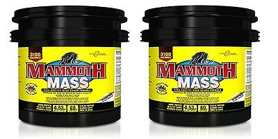 Mammoth Mass Bodybuilding Protein Carbs Anabolic Muscle Mass Gainer 9kg