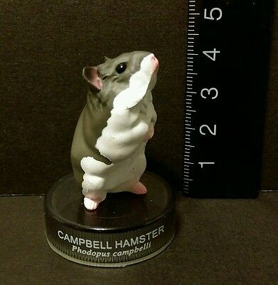 Kaiyodo Hamster's Lunch Part 1 Campbell Hamster Figure B Cute!!