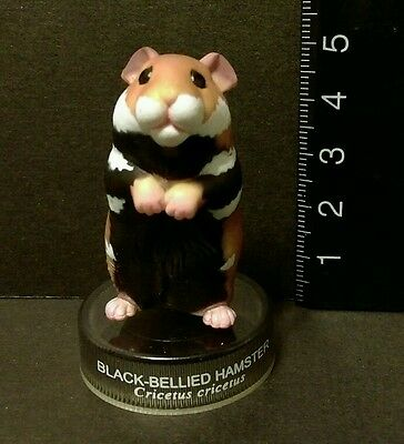 Kaiyodo Hamster's Lunch Part 1 Black Bellied Hamster Figure B Cute!!
