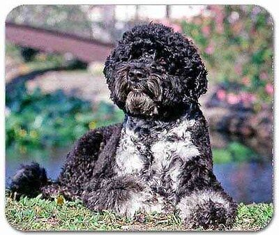 Portugese Water Dog Mousepad