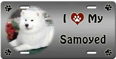 Samoyed License Plate - Love