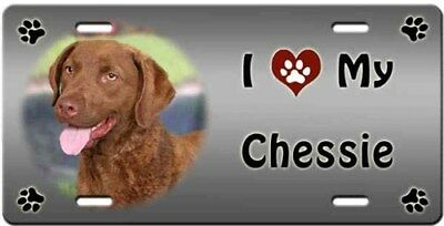 Chesapeake Bay Retriever License Plate - Love