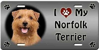 Norlfolk Terrier License Plate - Love