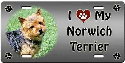 Norwich Terrier License Plate - Love