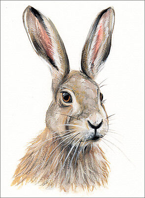 LIMITED EDITION WATERCOLOUR PRINT BROWN HARE no.5 WITH MOUNT, SARAH FEATHERSTONE