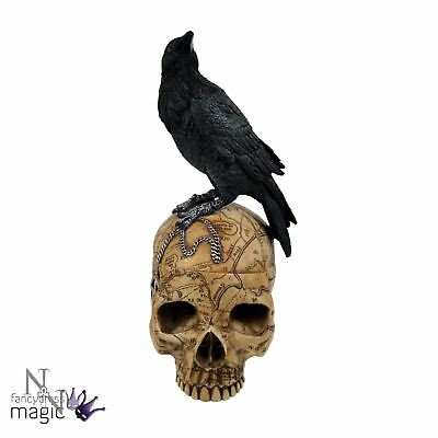 *nemesis Now Salems Familiar Skull Raven Crow Trinket Box Figurine Gothic Gift*