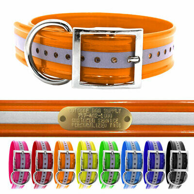"""Hunting Dog Name Collar Strap Heavy Duty D Ring 1 1/2"""" Wide Reflective"""