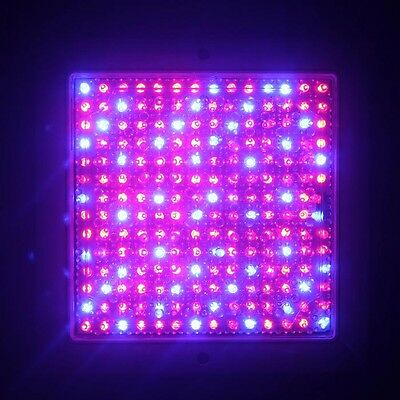 196LED 9W Plant Flower Grow Light Panel Red Blue Indoor Hydroponic Full Spectrum