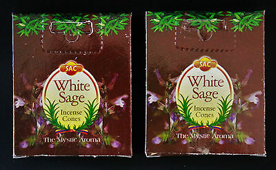20pcs 2 x Boxes WHITE SAGE Home Cleansing Ritual Incense Cones Insence & Burner