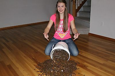 **1500+ Copper Pennies ** 1982 or older so all copper**  10 pounds plus!